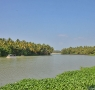 Veli lake extends till Aakulam
